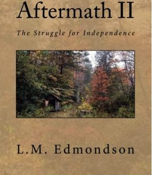 Aftermath II: The Struggle for Independence Book Review